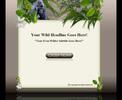 Thumbnail Wildlife Template